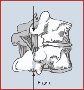 Ормед-Профилактик